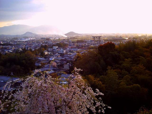 大美和の杜展望台からの景色と桜