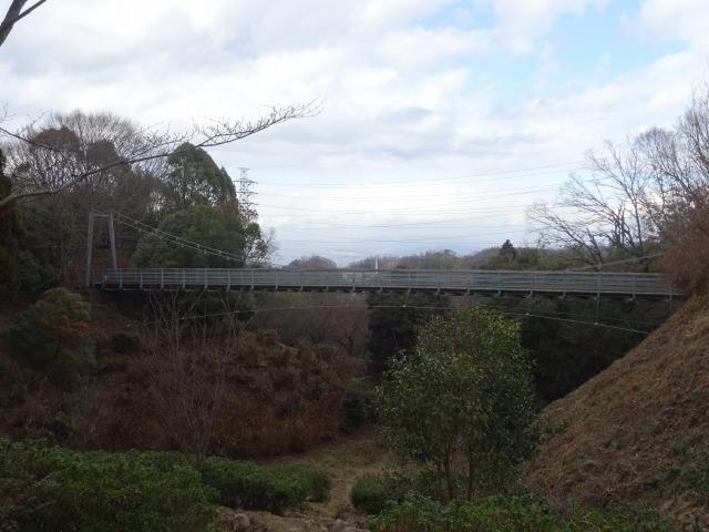 森の宝島の遠くに見える吊り橋