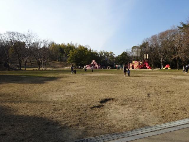 大渕池公園東地区の全体風景