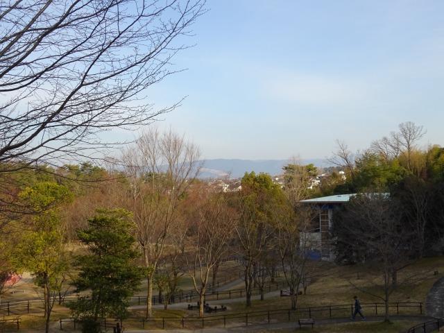 東地区の上からの景色