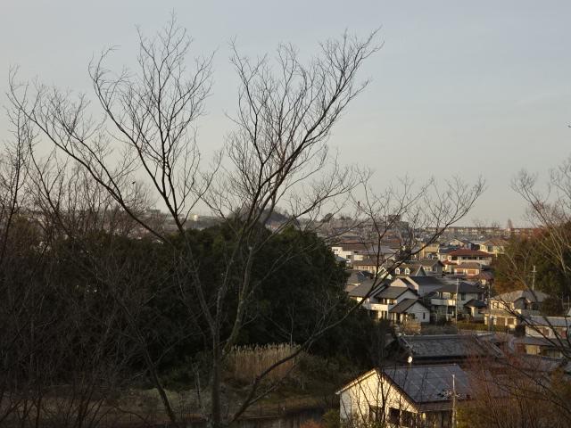 展望広場からの景色