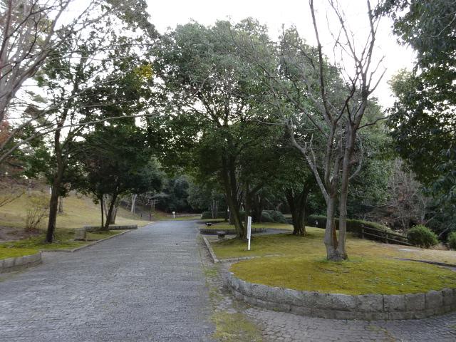 大渕池公園西地区の帰り道