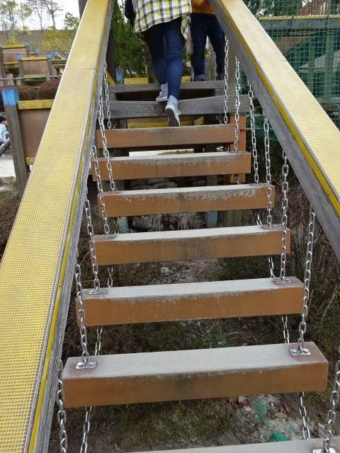 生駒山麓公園の大型木製遊具のグラグラ橋