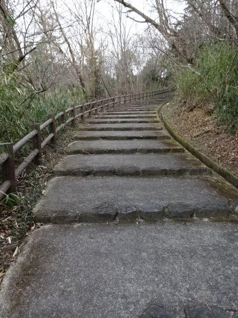 生駒山麓公園の展望台までの道