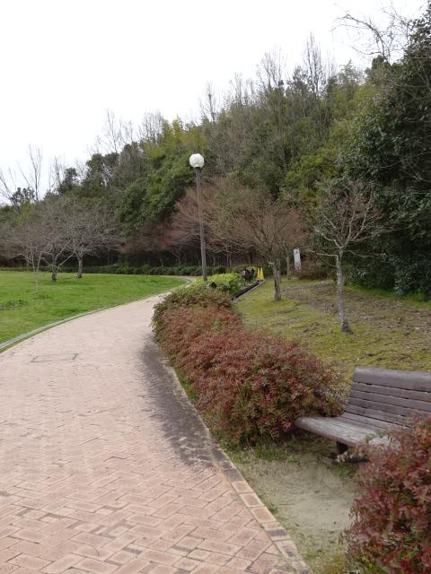 鴻ノ巣山運動公園の大芝生広場の坂道2