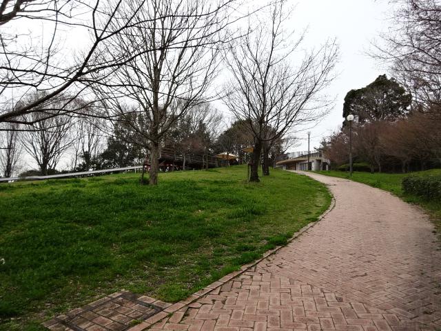 鴻ノ巣山運動公園の大芝生広場の坂道6
