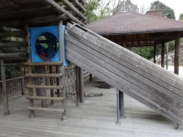 バンクーバー砦アスレチックはしご