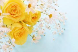父の日のプレゼント黄色いバラの花