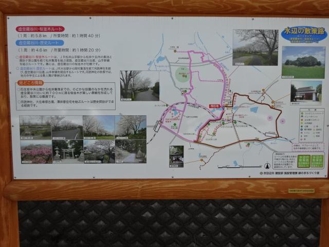 虚空蔵谷川の桜並木の看板