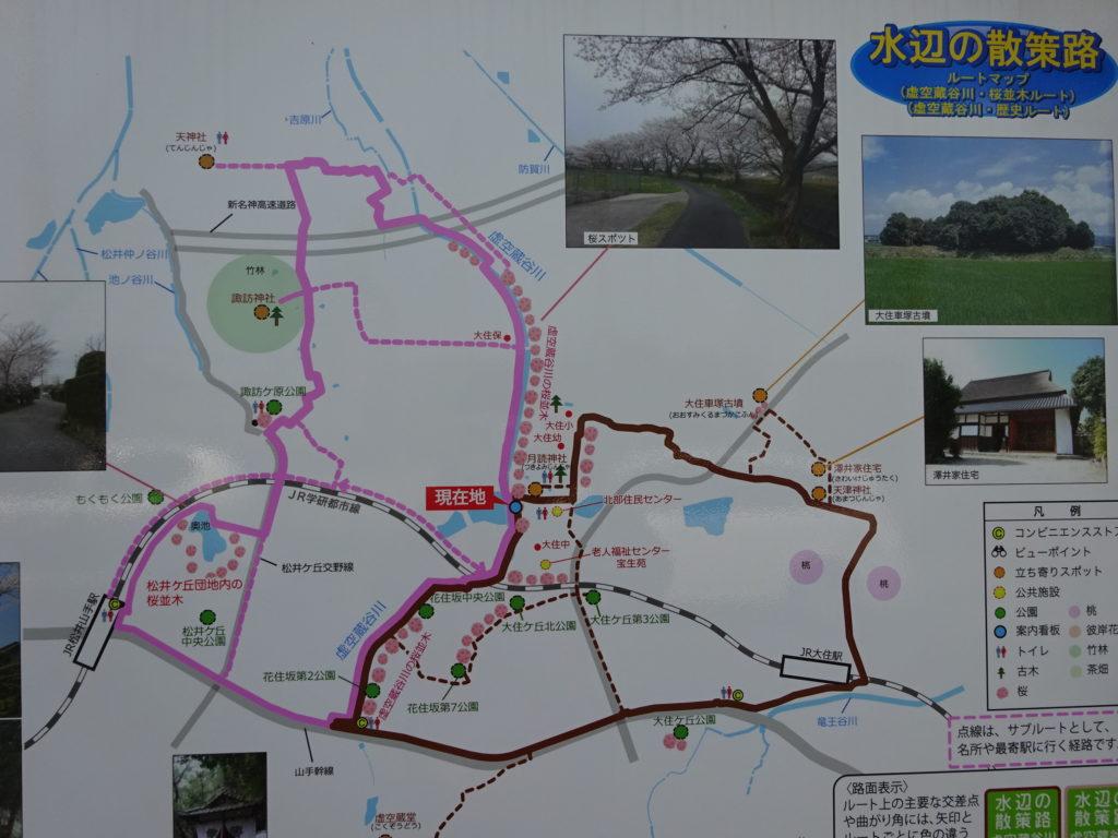 虚空蔵谷川の桜並木ルートの看板のアップ