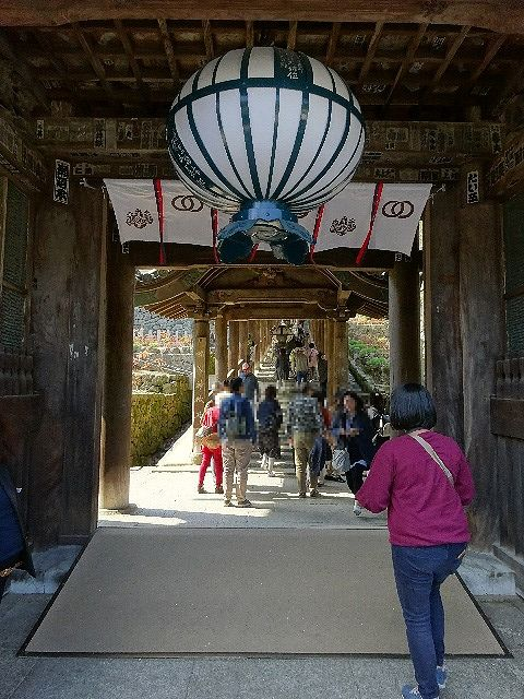 長谷寺仁王門の下