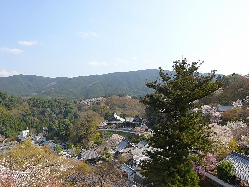 長谷寺本堂周辺からの景色
