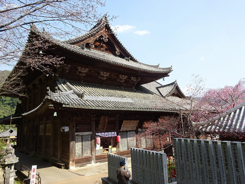 長谷寺の本堂の西面