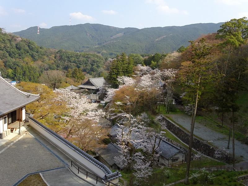 長谷寺五重塔あたりからの景色