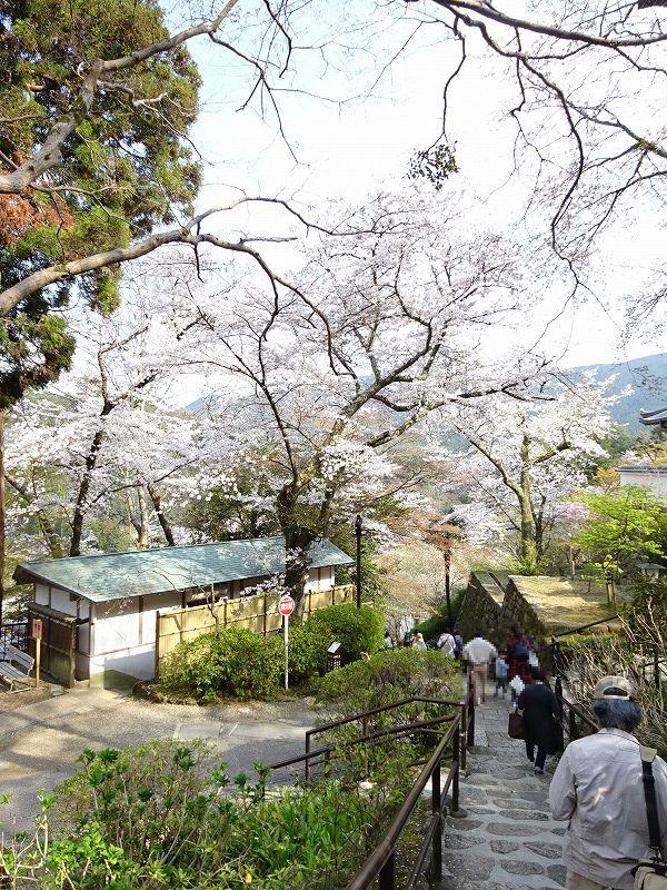 長谷寺の階段