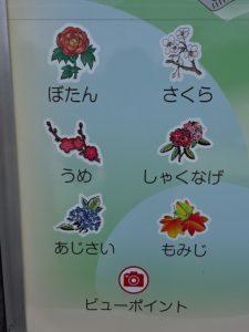 長谷寺境内地図の花