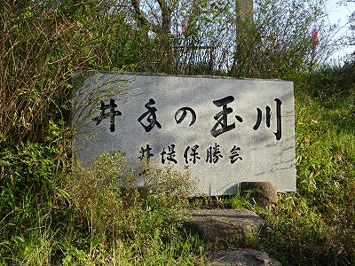 井手の玉川の石碑