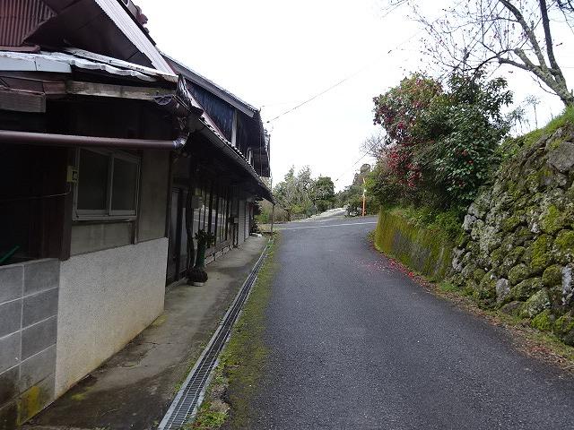 諸木野の桜への道中3