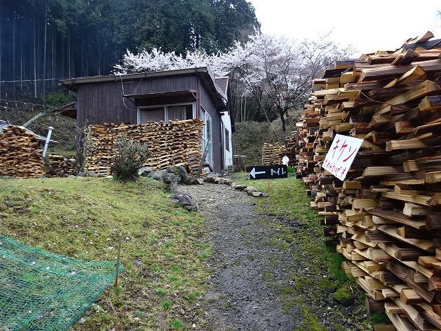 諸木野の桜、トイレの看板3
