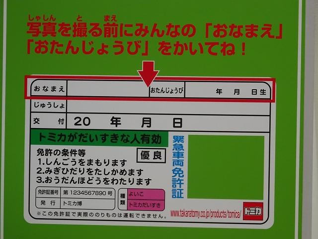 展示ゾーン免許証