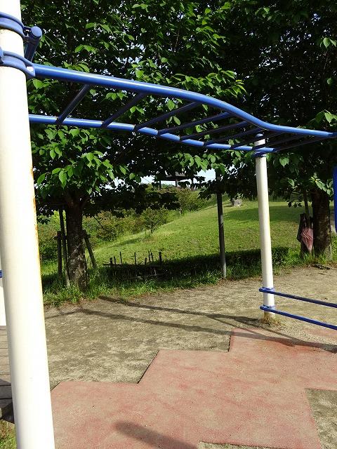田辺公園こども広場の多目的遊具うんてい