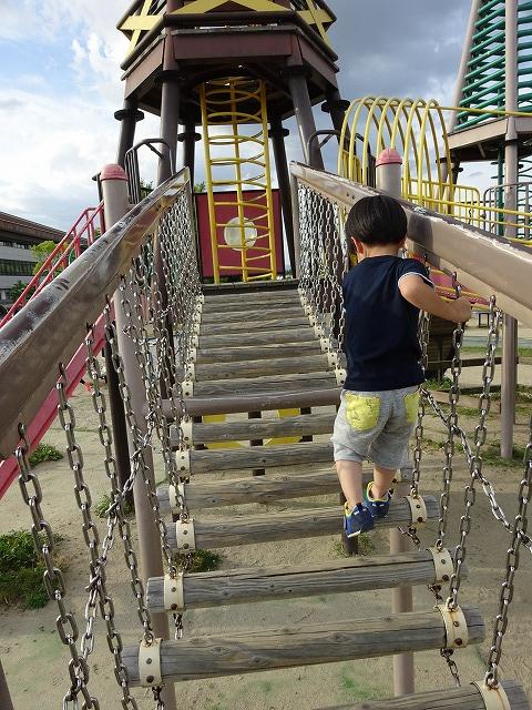 八幡市民スポーツ公園のちびっこ広場の遊具吊り橋