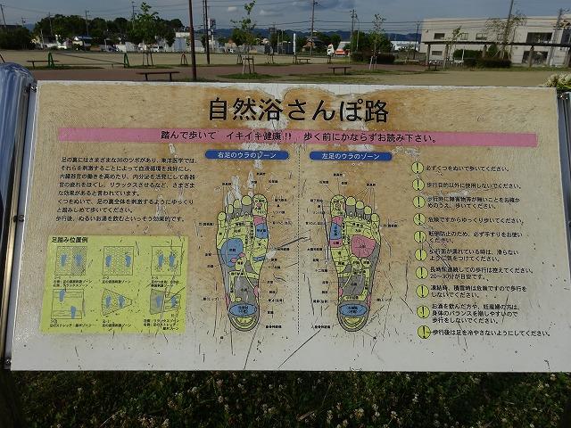 八幡市民スポーツ公園のシルバー広場自然浴さんぽ路の案内板