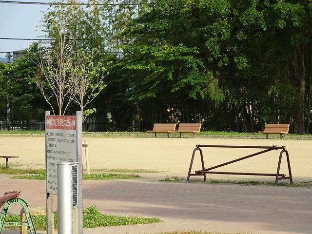 八幡市民スポーツ公園のグラウンドのシルバー広場
