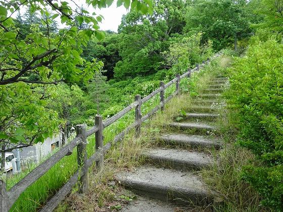 田辺公園の遊具ヒコーキランドの奥にある階段