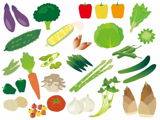 春から夏の旬の食べ物