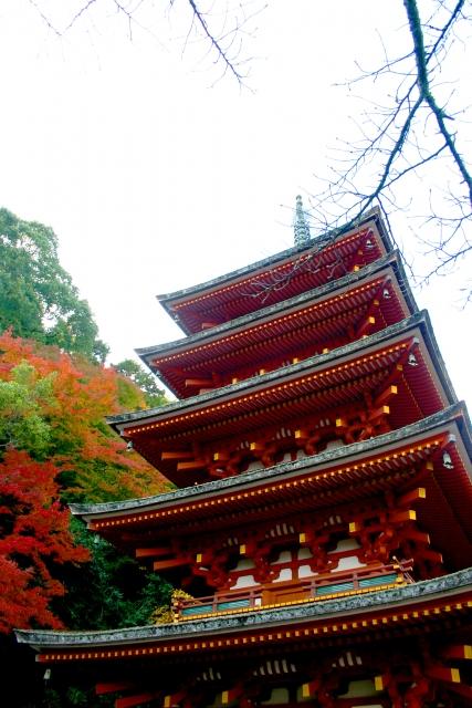 奈良の長谷寺の紅葉