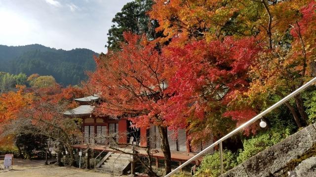 談山神社別の角度の紅葉