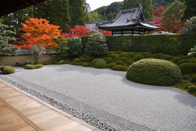 一休寺の庭の紅葉