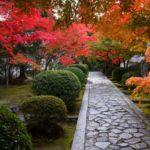 一休寺の紅葉写真