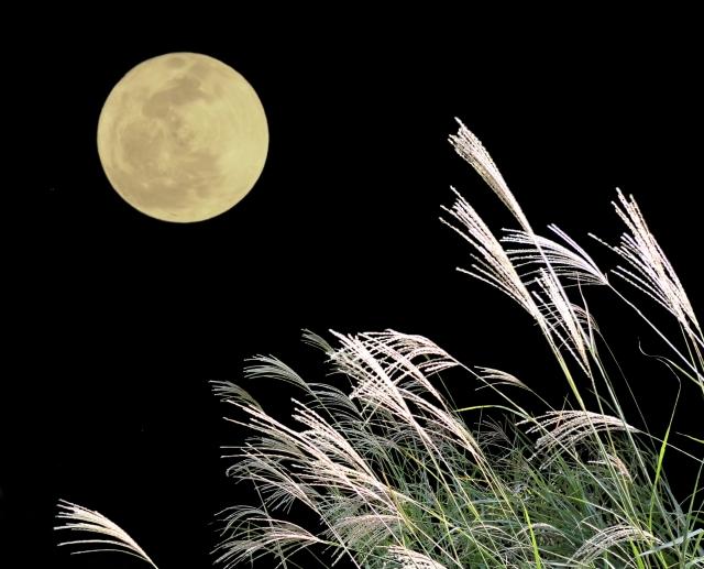 月見の写真イメージ