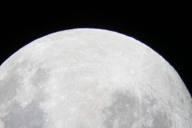 月見の大きなお月さん