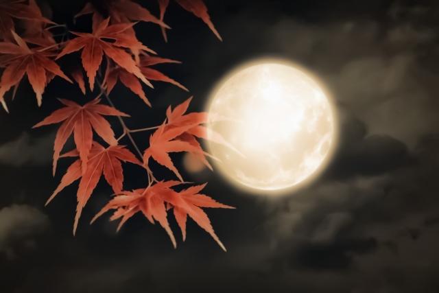 月見とモミジ